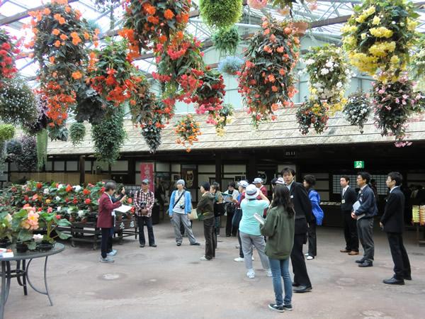 フォーゲルパーク内の花回廊の写真