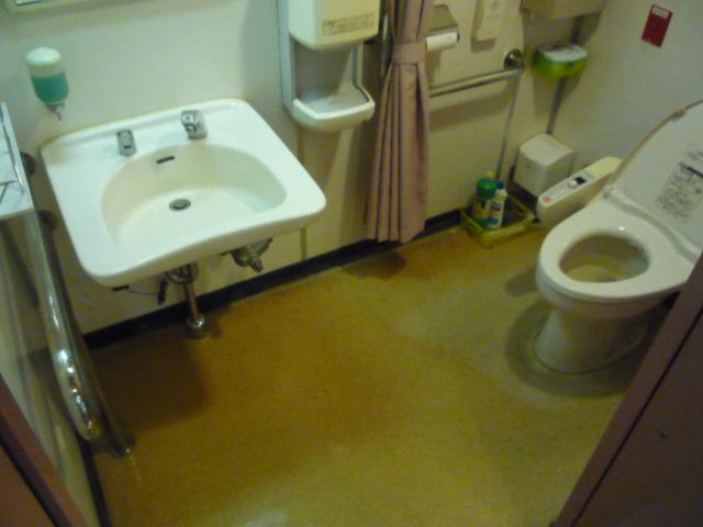 フェリー内 多目的トイレの画像 クリック・Enterで拡大